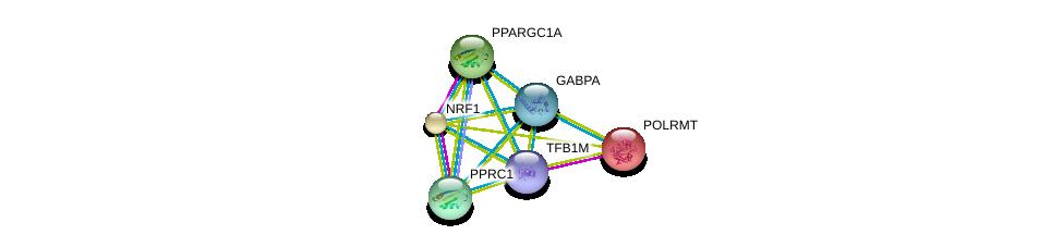 http://string-db.org/version_10/api/image/networkList?limit=0&targetmode=proteins&caller_identity=gene_cards&network_flavor=evidence&identifiers=9606.ENSP00000356134%0d%0a9606.ENSP00000264867%0d%0a9606.ENSP00000278070%0d%0a9606.ENSP00000346886%0d%0a9606.ENSP00000223190%0d%0a9606.ENSP00000215591%0d%0a