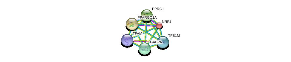 http://string-db.org/version_10/api/image/networkList?limit=0&targetmode=proteins&caller_identity=gene_cards&network_flavor=evidence&identifiers=9606.ENSP00000356134%0d%0a9606.ENSP00000346886%0d%0a9606.ENSP00000278070%0d%0a9606.ENSP00000264867%0d%0a9606.ENSP00000223190%0d%0a9606.ENSP00000420588%0d%0a