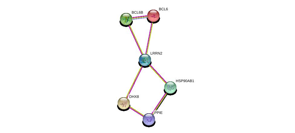 http://string-db.org/version_10/api/image/networkList?limit=0&targetmode=proteins&caller_identity=gene_cards&network_flavor=evidence&identifiers=9606.ENSP00000356143%0d%0a9606.ENSP00000293805%0d%0a9606.ENSP00000262415%0d%0a9606.ENSP00000232014%0d%0a9606.ENSP00000361918%0d%0a9606.ENSP00000325875%0d%0a