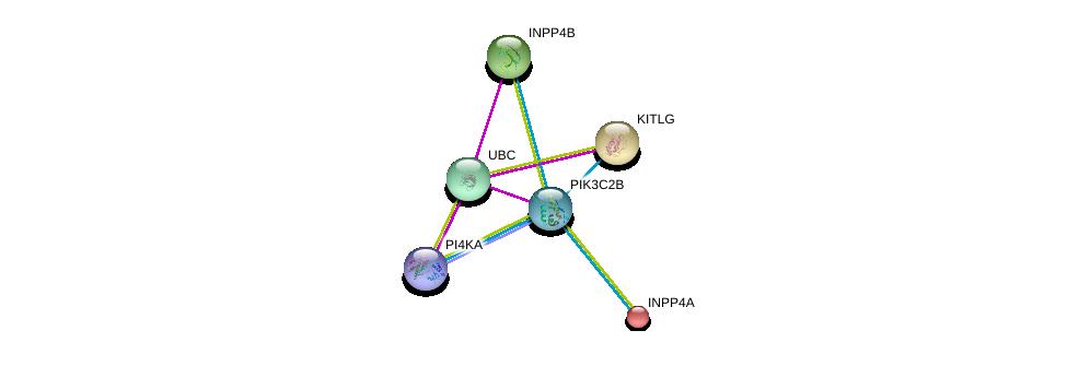 http://string-db.org/version_10/api/image/networkList?limit=0&targetmode=proteins&caller_identity=gene_cards&network_flavor=evidence&identifiers=9606.ENSP00000356155%0d%0a9606.ENSP00000344818%0d%0a9606.ENSP00000228280%0d%0a9606.ENSP00000458238%0d%0a9606.ENSP00000262992%0d%0a9606.ENSP00000074304%0d%0a