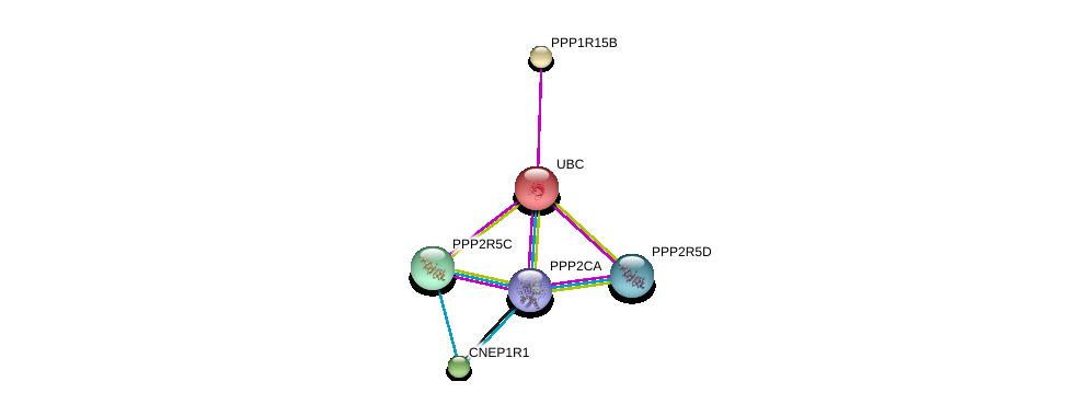 http://string-db.org/version_10/api/image/networkList?limit=0&targetmode=proteins&caller_identity=gene_cards&network_flavor=evidence&identifiers=9606.ENSP00000356156%0d%0a9606.ENSP00000344818%0d%0a9606.ENSP00000418447%0d%0a9606.ENSP00000417963%0d%0a9606.ENSP00000412324%0d%0a9606.ENSP00000405635%0d%0a