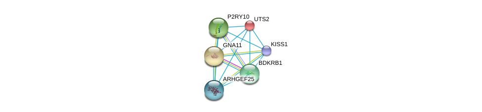 http://string-db.org/version_10/api/image/networkList?limit=0&targetmode=proteins&caller_identity=gene_cards&network_flavor=evidence&identifiers=9606.ENSP00000356162%0d%0a9606.ENSP00000335560%0d%0a9606.ENSP00000054668%0d%0a9606.ENSP00000078429%0d%0a9606.ENSP00000171757%0d%0a9606.ENSP00000216629%0d%0a