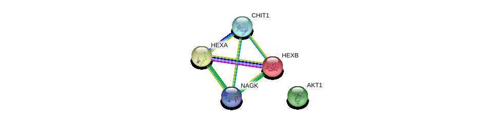 http://string-db.org/version_10/api/image/networkList?limit=0&targetmode=proteins&caller_identity=gene_cards&network_flavor=evidence&identifiers=9606.ENSP00000356198%0d%0a9606.ENSP00000261416%0d%0a9606.ENSP00000268097%0d%0a9606.ENSP00000389087%0d%0a9606.ENSP00000270202%0d%0a