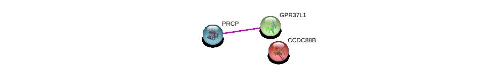 http://string-db.org/version_10/api/image/networkList?limit=0&targetmode=proteins&caller_identity=gene_cards&network_flavor=evidence&identifiers=9606.ENSP00000356251%0d%0a9606.ENSP00000377055%0d%0a9606.ENSP00000349238%0d%0a