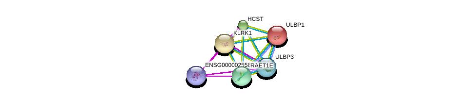http://string-db.org/version_10/api/image/networkList?limit=0&targetmode=proteins&caller_identity=gene_cards&network_flavor=evidence&identifiers=9606.ENSP00000356308%0d%0a9606.ENSP00000240618%0d%0a9606.ENSP00000349709%0d%0a9606.ENSP00000229708%0d%0a9606.ENSP00000246551%0d%0a9606.ENSP00000455951%0d%0a