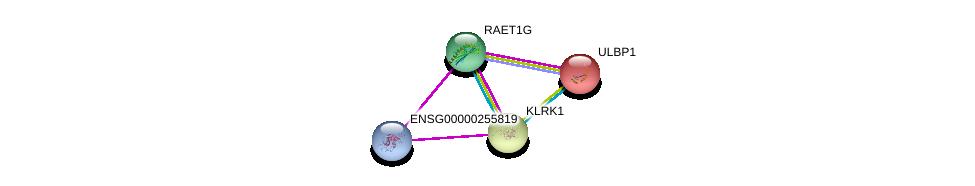 http://string-db.org/version_10/api/image/networkList?limit=0&targetmode=proteins&caller_identity=gene_cards&network_flavor=evidence&identifiers=9606.ENSP00000356329%0d%0a9606.ENSP00000455951%0d%0a9606.ENSP00000240618%0d%0a9606.ENSP00000229708%0d%0a