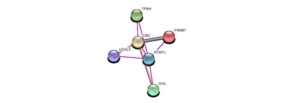 http://string-db.org/version_10/api/image/networkList?limit=0&targetmode=proteins&caller_identity=gene_cards&network_flavor=evidence&identifiers=9606.ENSP00000356348%0d%0a9606.ENSP00000344818%0d%0a9606.ENSP00000345230%0d%0a9606.ENSP00000259457%0d%0a9606.ENSP00000366819%0d%0a9606.ENSP00000348128%0d%0a