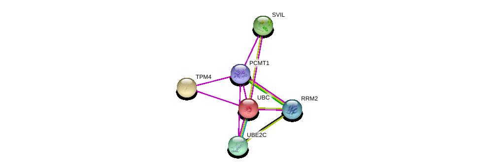 http://string-db.org/version_10/api/image/networkList?limit=0&targetmode=proteins&caller_identity=gene_cards&network_flavor=evidence&identifiers=9606.ENSP00000356348%0d%0a9606.ENSP00000344818%0d%0a9606.ENSP00000345230%0d%0a9606.ENSP00000348128%0d%0a9606.ENSP00000348838%0d%0a9606.ENSP00000353770%0d%0a