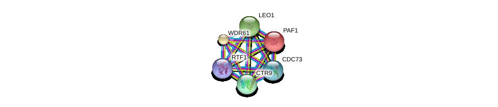 http://string-db.org/version_10/api/image/networkList?limit=0&targetmode=proteins&caller_identity=gene_cards&network_flavor=evidence&identifiers=9606.ENSP00000356405%0d%0a9606.ENSP00000355013%0d%0a9606.ENSP00000221265%0d%0a9606.ENSP00000299601%0d%0a9606.ENSP00000374280%0d%0a9606.ENSP00000267973%0d%0a