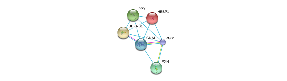 http://string-db.org/version_10/api/image/networkList?limit=0&targetmode=proteins&caller_identity=gene_cards&network_flavor=evidence&identifiers=9606.ENSP00000356429%0d%0a9606.ENSP00000343027%0d%0a9606.ENSP00000014930%0d%0a9606.ENSP00000216629%0d%0a9606.ENSP00000225992%0d%0a9606.ENSP00000228307%0d%0a