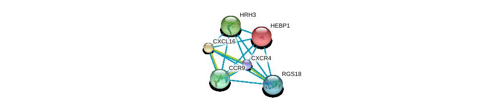 http://string-db.org/version_10/api/image/networkList?limit=0&targetmode=proteins&caller_identity=gene_cards&network_flavor=evidence&identifiers=9606.ENSP00000356430%0d%0a9606.ENSP00000342560%0d%0a9606.ENSP00000293778%0d%0a9606.ENSP00000350256%0d%0a9606.ENSP00000386884%0d%0a9606.ENSP00000014930%0d%0a