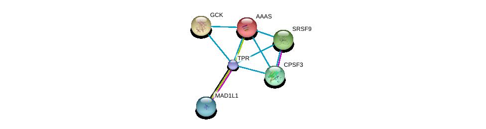 http://string-db.org/version_10/api/image/networkList?limit=0&targetmode=proteins&caller_identity=gene_cards&network_flavor=evidence&identifiers=9606.ENSP00000356448%0d%0a9606.ENSP00000265854%0d%0a9606.ENSP00000209873%0d%0a9606.ENSP00000223366%0d%0a9606.ENSP00000229390%0d%0a9606.ENSP00000238112%0d%0a