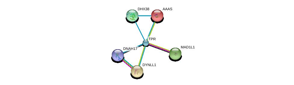 http://string-db.org/version_10/api/image/networkList?limit=0&targetmode=proteins&caller_identity=gene_cards&network_flavor=evidence&identifiers=9606.ENSP00000356448%0d%0a9606.ENSP00000265854%0d%0a9606.ENSP00000209873%0d%0a9606.ENSP00000242577%0d%0a9606.ENSP00000268482%0d%0a9606.ENSP00000374490%0d%0a