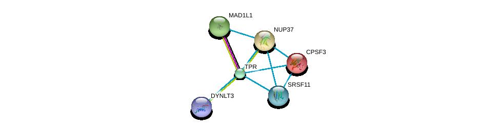 http://string-db.org/version_10/api/image/networkList?limit=0&targetmode=proteins&caller_identity=gene_cards&network_flavor=evidence&identifiers=9606.ENSP00000356448%0d%0a9606.ENSP00000265854%0d%0a9606.ENSP00000367841%0d%0a9606.ENSP00000251074%0d%0a9606.ENSP00000238112%0d%0a9606.ENSP00000359988%0d%0a