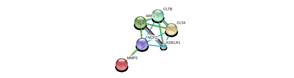 http://string-db.org/version_10/api/image/networkList?limit=0&targetmode=proteins&caller_identity=gene_cards&network_flavor=evidence&identifiers=9606.ENSP00000356505%0d%0a9606.ENSP00000242285%0d%0a9606.ENSP00000309415%0d%0a9606.ENSP00000329471%0d%0a9606.ENSP00000272102%0d%0a9606.ENSP00000219070%0d%0a