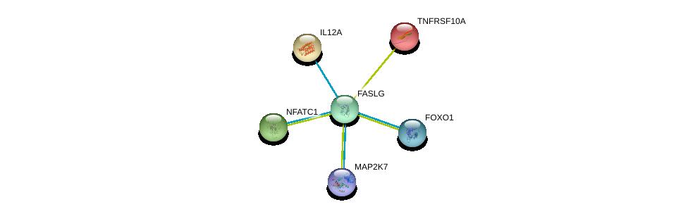 http://string-db.org/version_10/api/image/networkList?limit=0&targetmode=proteins&caller_identity=gene_cards&network_flavor=evidence&identifiers=9606.ENSP00000356694%0d%0a9606.ENSP00000368880%0d%0a9606.ENSP00000221132%0d%0a9606.ENSP00000303231%0d%0a9606.ENSP00000381066%0d%0a9606.ENSP00000327850%0d%0a