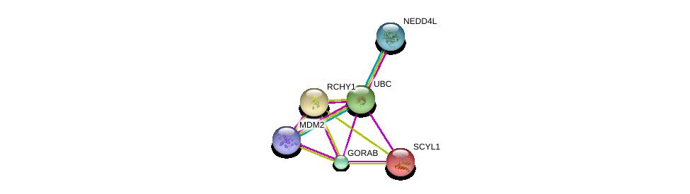 http://string-db.org/version_10/api/image/networkList?limit=0&targetmode=proteins&caller_identity=gene_cards&network_flavor=evidence&identifiers=9606.ENSP00000356737%0d%0a9606.ENSP00000321239%0d%0a9606.ENSP00000270176%0d%0a9606.ENSP00000417281%0d%0a9606.ENSP00000344818%0d%0a9606.ENSP00000383199%0d%0a