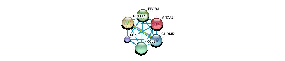 http://string-db.org/version_10/api/image/networkList?limit=0&targetmode=proteins&caller_identity=gene_cards&network_flavor=evidence&identifiers=9606.ENSP00000356792%0d%0a9606.ENSP00000388825%0d%0a9606.ENSP00000257497%0d%0a9606.ENSP00000277942%0d%0a9606.ENSP00000372750%0d%0a9606.ENSP00000328230%0d%0a