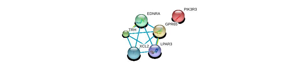 http://string-db.org/version_10/api/image/networkList?limit=0&targetmode=proteins&caller_identity=gene_cards&network_flavor=evidence&identifiers=9606.ENSP00000356793%0d%0a9606.ENSP00000359643%0d%0a9606.ENSP00000267549%0d%0a9606.ENSP00000262741%0d%0a9606.ENSP00000303452%0d%0a9606.ENSP00000315011%0d%0a