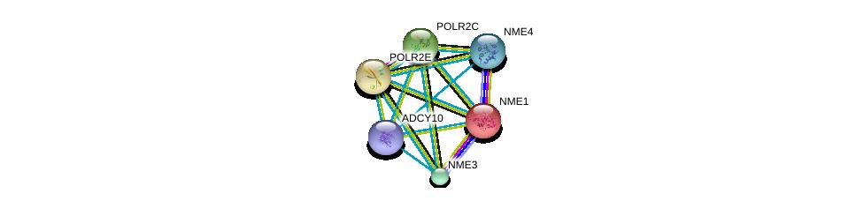 http://string-db.org/version_10/api/image/networkList?limit=0&targetmode=proteins&caller_identity=gene_cards&network_flavor=evidence&identifiers=9606.ENSP00000356825%0d%0a9606.ENSP00000013034%0d%0a9606.ENSP00000215587%0d%0a9606.ENSP00000219252%0d%0a9606.ENSP00000219302%0d%0a9606.ENSP00000219479%0d%0a