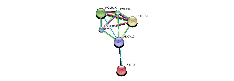 http://string-db.org/version_10/api/image/networkList?limit=0&targetmode=proteins&caller_identity=gene_cards&network_flavor=evidence&identifiers=9606.ENSP00000356825%0d%0a9606.ENSP00000291539%0d%0a9606.ENSP00000292614%0d%0a9606.ENSP00000293860%0d%0a9606.ENSP00000296223%0d%0a9606.ENSP00000299853%0d%0a