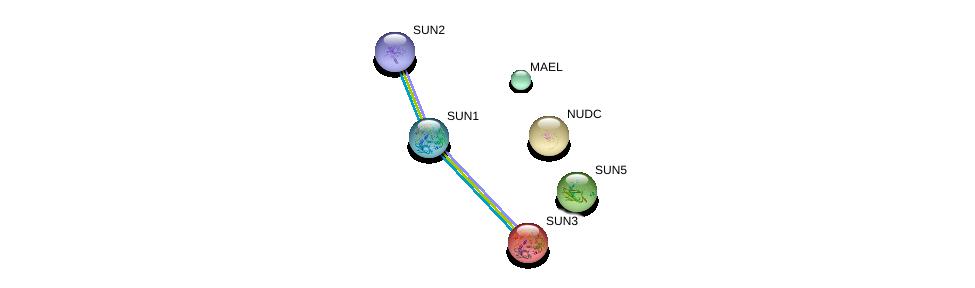 http://string-db.org/version_10/api/image/networkList?limit=0&targetmode=proteins&caller_identity=gene_cards&network_flavor=evidence&identifiers=9606.ENSP00000356846%0d%0a9606.ENSP00000384015%0d%0a9606.ENSP00000385616%0d%0a9606.ENSP00000319664%0d%0a9606.ENSP00000297325%0d%0a9606.ENSP00000348496%0d%0a