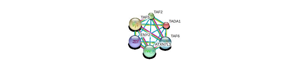 http://string-db.org/version_10/api/image/networkList?limit=0&targetmode=proteins&caller_identity=gene_cards&network_flavor=evidence&identifiers=9606.ENSP00000356848%0d%0a9606.ENSP00000429986%0d%0a9606.ENSP00000399982%0d%0a9606.ENSP00000397259%0d%0a9606.ENSP00000367406%0d%0a9606.ENSP00000358854%0d%0a