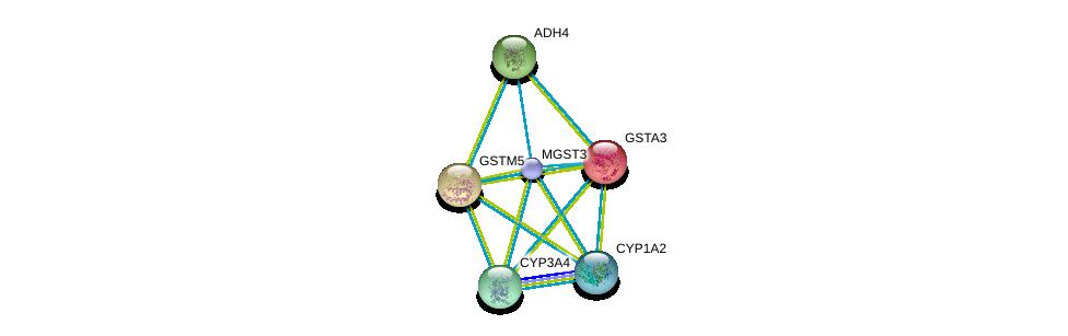 http://string-db.org/version_10/api/image/networkList?limit=0&targetmode=proteins&caller_identity=gene_cards&network_flavor=evidence&identifiers=9606.ENSP00000356859%0d%0a9606.ENSP00000337915%0d%0a9606.ENSP00000256593%0d%0a9606.ENSP00000211122%0d%0a9606.ENSP00000342007%0d%0a9606.ENSP00000265512%0d%0a