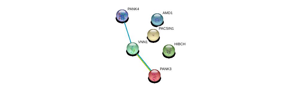 http://string-db.org/version_10/api/image/networkList?limit=0&targetmode=proteins&caller_identity=gene_cards&network_flavor=evidence&identifiers=9606.ENSP00000356905%0d%0a9606.ENSP00000367727%0d%0a9606.ENSP00000239231%0d%0a9606.ENSP00000357880%0d%0a9606.ENSP00000352706%0d%0a9606.ENSP00000244458%0d%0a