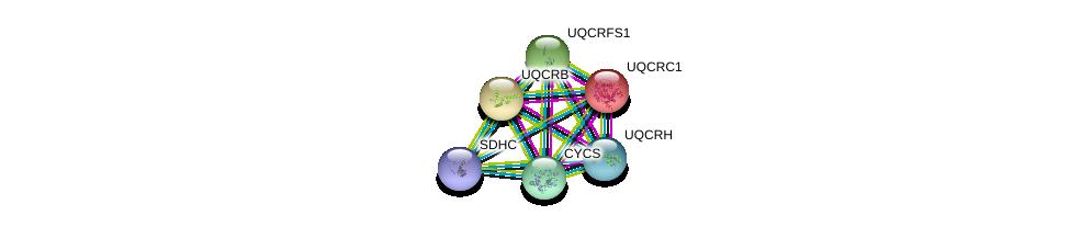 http://string-db.org/version_10/api/image/networkList?limit=0&targetmode=proteins&caller_identity=gene_cards&network_flavor=evidence&identifiers=9606.ENSP00000356953%0d%0a9606.ENSP00000203407%0d%0a9606.ENSP00000287022%0d%0a9606.ENSP00000306397%0d%0a9606.ENSP00000307786%0d%0a9606.ENSP00000309565%0d%0a