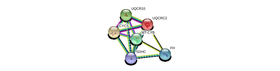 http://string-db.org/version_10/api/image/networkList?limit=0&targetmode=proteins&caller_identity=gene_cards&network_flavor=evidence&identifiers=9606.ENSP00000356953%0d%0a9606.ENSP00000268379%0d%0a9606.ENSP00000307786%0d%0a9606.ENSP00000332887%0d%0a9606.ENSP00000354554%0d%0a9606.ENSP00000355518%0d%0a