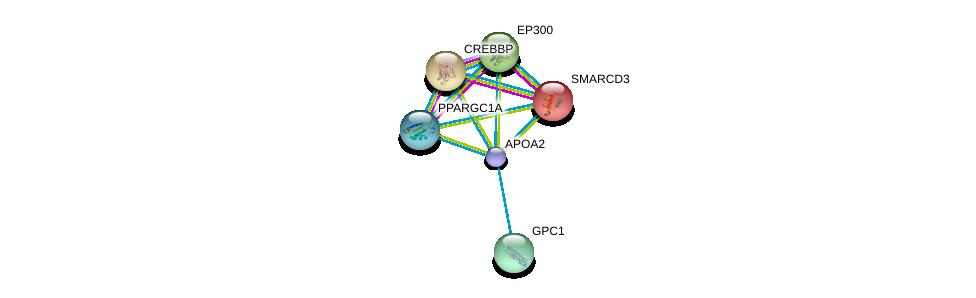 http://string-db.org/version_10/api/image/networkList?limit=0&targetmode=proteins&caller_identity=gene_cards&network_flavor=evidence&identifiers=9606.ENSP00000356969%0d%0a9606.ENSP00000262188%0d%0a9606.ENSP00000262367%0d%0a9606.ENSP00000263253%0d%0a9606.ENSP00000264039%0d%0a9606.ENSP00000264867%0d%0a
