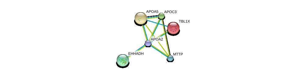 http://string-db.org/version_10/api/image/networkList?limit=0&targetmode=proteins&caller_identity=gene_cards&network_flavor=evidence&identifiers=9606.ENSP00000356969%0d%0a9606.ENSP00000265517%0d%0a9606.ENSP00000217964%0d%0a9606.ENSP00000227665%0d%0a9606.ENSP00000227667%0d%0a9606.ENSP00000231887%0d%0a