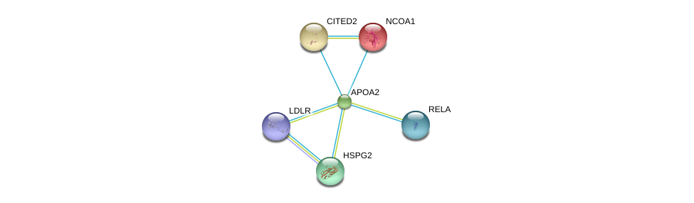 http://string-db.org/version_10/api/image/networkList?limit=0&targetmode=proteins&caller_identity=gene_cards&network_flavor=evidence&identifiers=9606.ENSP00000356969%0d%0a9606.ENSP00000384273%0d%0a9606.ENSP00000363827%0d%0a9606.ENSP00000320940%0d%0a9606.ENSP00000356623%0d%0a9606.ENSP00000454071%0d%0a