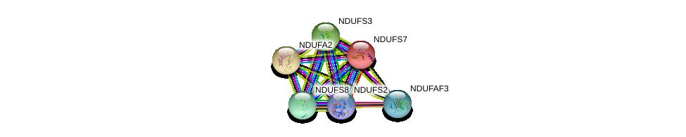 http://string-db.org/version_10/api/image/networkList?limit=0&targetmode=proteins&caller_identity=gene_cards&network_flavor=evidence&identifiers=9606.ENSP00000356972%0d%0a9606.ENSP00000263774%0d%0a9606.ENSP00000252102%0d%0a9606.ENSP00000323076%0d%0a9606.ENSP00000315774%0d%0a9606.ENSP00000233627%0d%0a