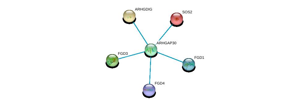 http://string-db.org/version_10/api/image/networkList?limit=0&targetmode=proteins&caller_identity=gene_cards&network_flavor=evidence&identifiers=9606.ENSP00000356992%0d%0a9606.ENSP00000336914%0d%0a9606.ENSP00000364277%0d%0a9606.ENSP00000394487%0d%0a9606.ENSP00000216373%0d%0a9606.ENSP00000219409%0d%0a