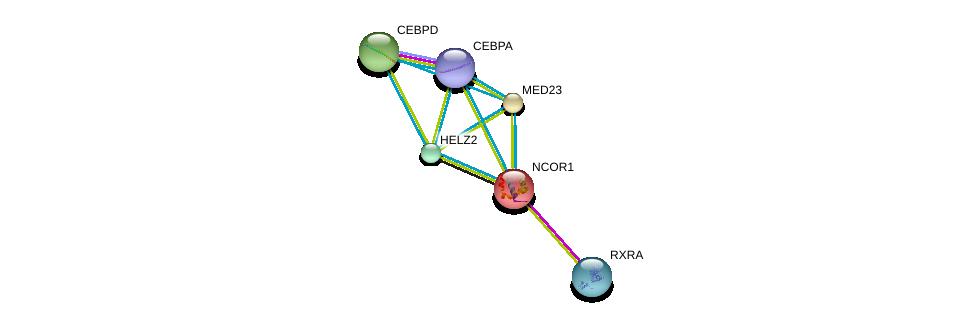 http://string-db.org/version_10/api/image/networkList?limit=0&targetmode=proteins&caller_identity=gene_cards&network_flavor=evidence&identifiers=9606.ENSP00000357047%0d%0a9606.ENSP00000419692%0d%0a9606.ENSP00000386165%0d%0a9606.ENSP00000268712%0d%0a9606.ENSP00000417401%0d%0a9606.ENSP00000427514%0d%0a