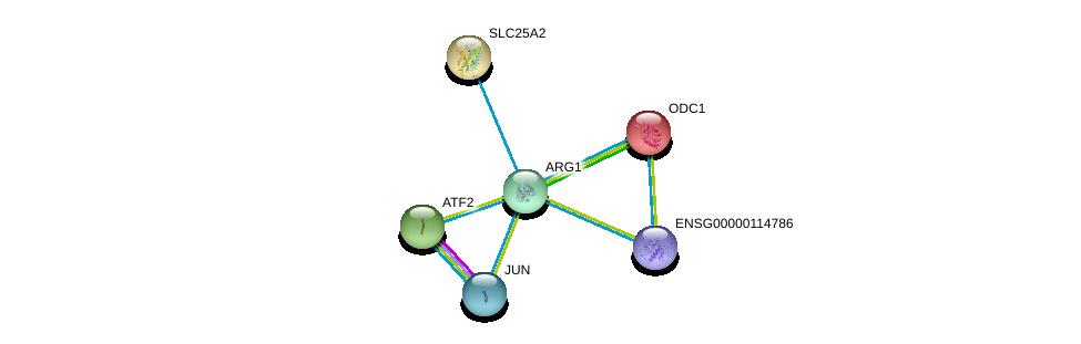 http://string-db.org/version_10/api/image/networkList?limit=0&targetmode=proteins&caller_identity=gene_cards&network_flavor=evidence&identifiers=9606.ENSP00000357066%0d%0a9606.ENSP00000239451%0d%0a9606.ENSP00000264110%0d%0a9606.ENSP00000360266%0d%0a9606.ENSP00000234111%0d%0a9606.ENSP00000420487%0d%0a