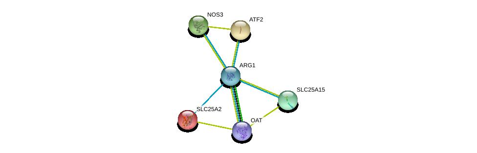 http://string-db.org/version_10/api/image/networkList?limit=0&targetmode=proteins&caller_identity=gene_cards&network_flavor=evidence&identifiers=9606.ENSP00000357066%0d%0a9606.ENSP00000297494%0d%0a9606.ENSP00000342267%0d%0a9606.ENSP00000357838%0d%0a9606.ENSP00000239451%0d%0a9606.ENSP00000264110%0d%0a