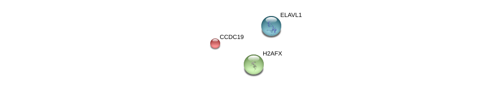 http://string-db.org/version_10/api/image/networkList?limit=0&targetmode=proteins&caller_identity=gene_cards&network_flavor=evidence&identifiers=9606.ENSP00000357079%0d%0a9606.ENSP00000385269%0d%0a9606.ENSP00000364310%0d%0a