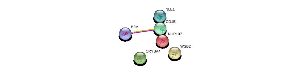 http://string-db.org/version_10/api/image/networkList?limit=0&targetmode=proteins&caller_identity=gene_cards&network_flavor=evidence&identifiers=9606.ENSP00000357149%0d%0a9606.ENSP00000452780%0d%0a9606.ENSP00000229179%0d%0a9606.ENSP00000346805%0d%0a9606.ENSP00000413572%0d%0a9606.ENSP00000319474%0d%0a