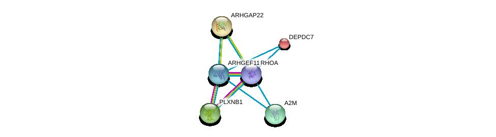 http://string-db.org/version_10/api/image/networkList?limit=0&targetmode=proteins&caller_identity=gene_cards&network_flavor=evidence&identifiers=9606.ENSP00000357177%0d%0a9606.ENSP00000400175%0d%0a9606.ENSP00000296440%0d%0a9606.ENSP00000323929%0d%0a9606.ENSP00000241051%0d%0a9606.ENSP00000249601%0d%0a