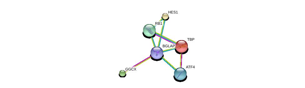 http://string-db.org/version_10/api/image/networkList?limit=0&targetmode=proteins&caller_identity=gene_cards&network_flavor=evidence&identifiers=9606.ENSP00000357255%0d%0a9606.ENSP00000230354%0d%0a9606.ENSP00000232424%0d%0a9606.ENSP00000336790%0d%0a9606.ENSP00000267163%0d%0a9606.ENSP00000233838%0d%0a