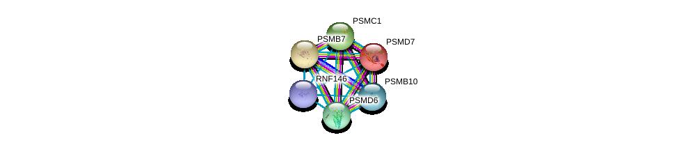 http://string-db.org/version_10/api/image/networkList?limit=0&targetmode=proteins&caller_identity=gene_cards&network_flavor=evidence&identifiers=9606.ENSP00000357297%0d%0a9606.ENSP00000351314%0d%0a9606.ENSP00000261303%0d%0a9606.ENSP00000259457%0d%0a9606.ENSP00000295901%0d%0a9606.ENSP00000219313%0d%0a