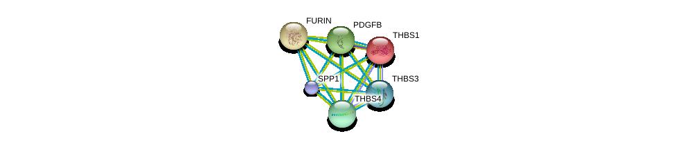 http://string-db.org/version_10/api/image/networkList?limit=0&targetmode=proteins&caller_identity=gene_cards&network_flavor=evidence&identifiers=9606.ENSP00000357362%0d%0a9606.ENSP00000260356%0d%0a9606.ENSP00000378517%0d%0a9606.ENSP00000339730%0d%0a9606.ENSP00000330382%0d%0a9606.ENSP00000268171%0d%0a