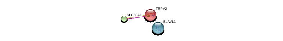 http://string-db.org/version_10/api/image/networkList?limit=0&targetmode=proteins&caller_identity=gene_cards&network_flavor=evidence&identifiers=9606.ENSP00000357389%0d%0a9606.ENSP00000342222%0d%0a9606.ENSP00000385269%0d%0a