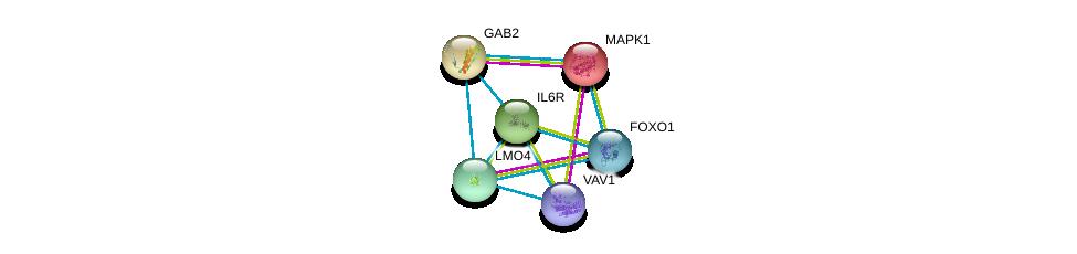 http://string-db.org/version_10/api/image/networkList?limit=0&targetmode=proteins&caller_identity=gene_cards&network_flavor=evidence&identifiers=9606.ENSP00000357470%0d%0a9606.ENSP00000215832%0d%0a9606.ENSP00000472929%0d%0a9606.ENSP00000359573%0d%0a9606.ENSP00000354952%0d%0a9606.ENSP00000368880%0d%0a