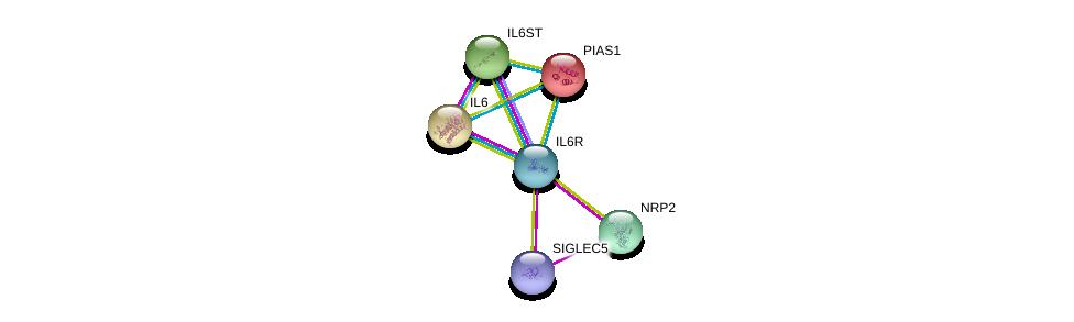 http://string-db.org/version_10/api/image/networkList?limit=0&targetmode=proteins&caller_identity=gene_cards&network_flavor=evidence&identifiers=9606.ENSP00000357470%0d%0a9606.ENSP00000258743%0d%0a9606.ENSP00000338799%0d%0a9606.ENSP00000353582%0d%0a9606.ENSP00000455510%0d%0a9606.ENSP00000249636%0d%0a