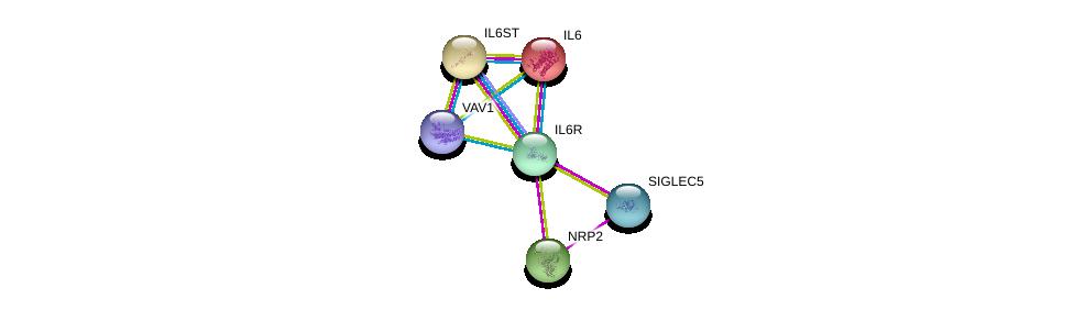 http://string-db.org/version_10/api/image/networkList?limit=0&targetmode=proteins&caller_identity=gene_cards&network_flavor=evidence&identifiers=9606.ENSP00000357470%0d%0a9606.ENSP00000258743%0d%0a9606.ENSP00000338799%0d%0a9606.ENSP00000455510%0d%0a9606.ENSP00000353582%0d%0a9606.ENSP00000472929%0d%0a