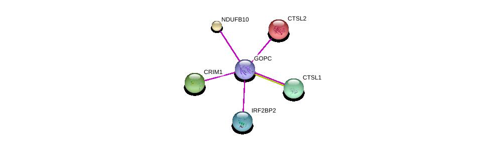 http://string-db.org/version_10/api/image/networkList?limit=0&targetmode=proteins&caller_identity=gene_cards&network_flavor=evidence&identifiers=9606.ENSP00000357484%0d%0a9606.ENSP00000268668%0d%0a9606.ENSP00000355568%0d%0a9606.ENSP00000280527%0d%0a9606.ENSP00000345344%0d%0a9606.ENSP00000259470%0d%0a